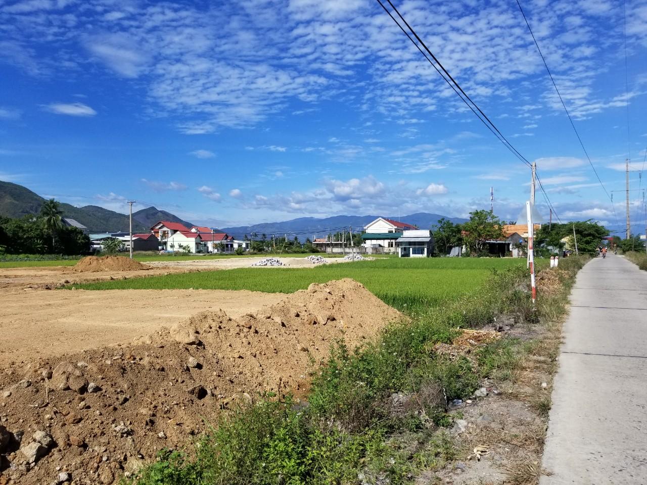 Sau khi được đổ đất và cải thiện hạ tầng, chuyển mục đích sử dụng đất, những thửa ruộng này sẽ trở thành đất thổ cư